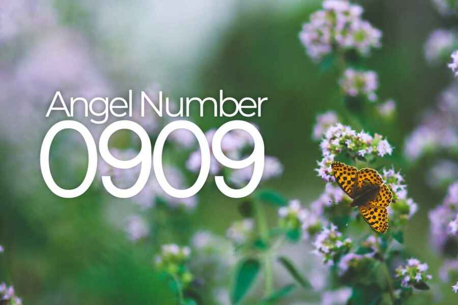 Angel Number 0909