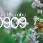 Angel Number 0909 Symbolism & Meaning
