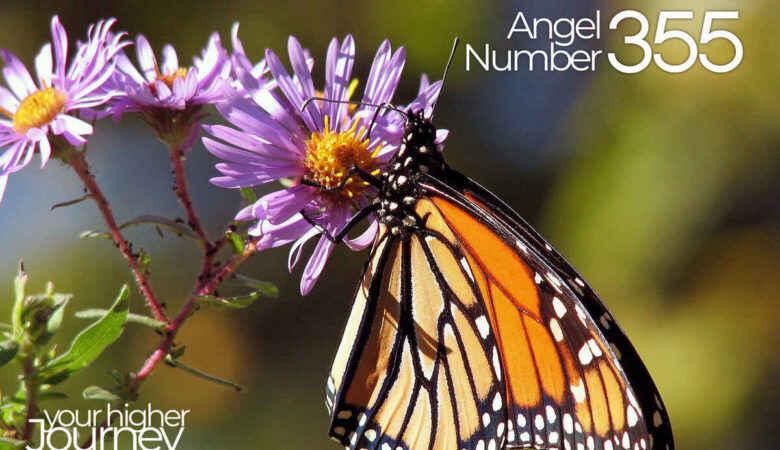 Angel Number 355