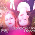 Capricorn and Cancer Friendship