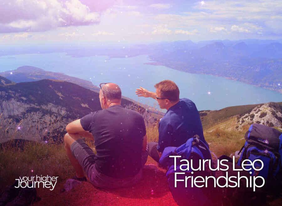 Taurus Leo Friendship